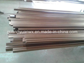 Aluminium Extruded Powder Coated Paint Profile Tube/Pipes